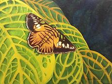 Deanne Habeeb_Free Butterfly.jpeg