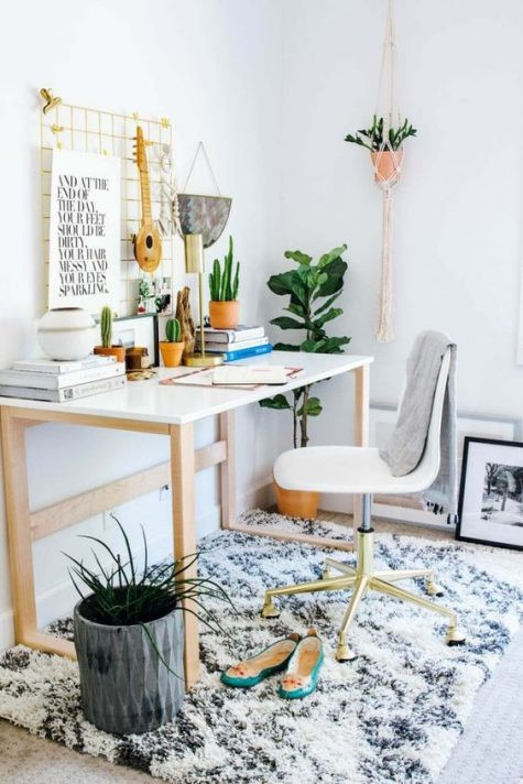 Brixel, Architecture, Interiors, Plants, Home office, Snake plant. Areca Palm, peace lily
