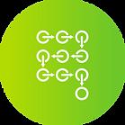 Projektvorgehen Lernplattform e-tutor.png