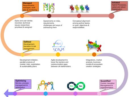 Digital Platform Development Lifecycle