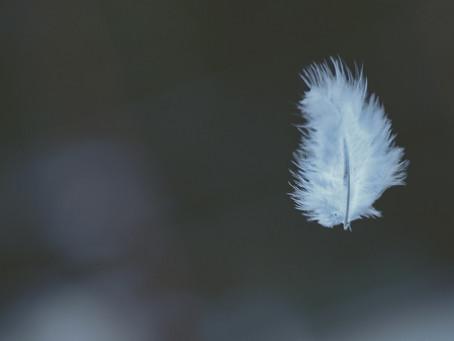 Über das Loslassen - Gedanken&Impulse
