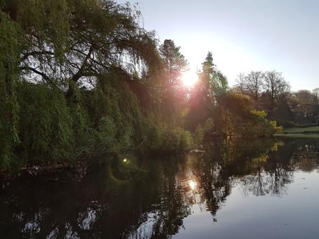 Thrive in 5D: Openhand Easter Retreat findet statt