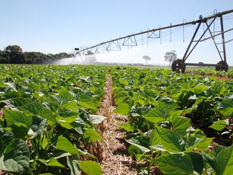 Governo de Goiás vai entregar benefícios e anunciar melhorias ao setor agropecuário