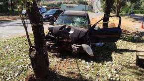 Menina de 2 anos morre após mãe perder o controle do carro e bater contra árvore, em Goiânia