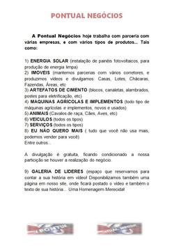 PONTUAL_NEGÓCIOS.jpg
