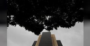 BC cria grupo de trabalho para discutir emissão de moeda digital no Brasil