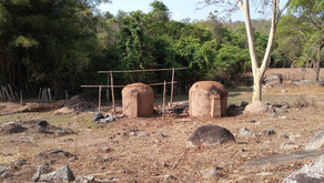 Polícia civil identifica mais uma área de crime ambiental em Morrinhos