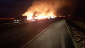 Produtor rural é preso por incendiar mata às margens  da BR-153, entre Goiatuba e Itumbiara