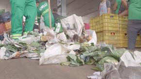 Ceasa quer transformar lixo em soluções sustentáveis