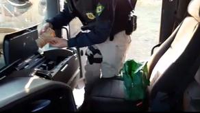 Caminhoneiro é preso BR 050 com carreta roubada e dinheiro para transportar cigarros de contrabando