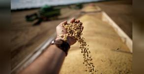 Brasil terá safra recorde de 278,7 mi t em 20/21 puxada por soja e milho, diz Conab