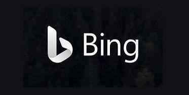 Bing logo.jpg