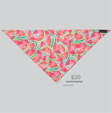 New Releases Bandana Watermelon.jpg