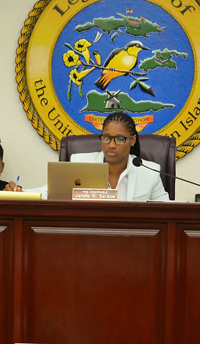 Senator Janelle K Sarauw born and raised on St. Thomas in the US Virgin Islands is a passionate public servant.
