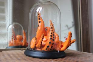L'octopus se libère
