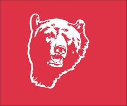 PISGAH Bear SEAT COVER 2015