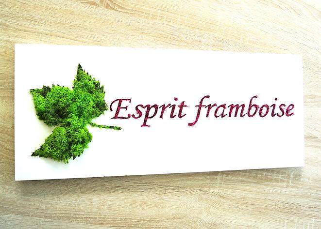 Cadre Esprit framboise.jpg