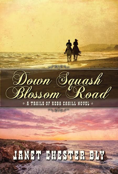 down-squash-blossom-road