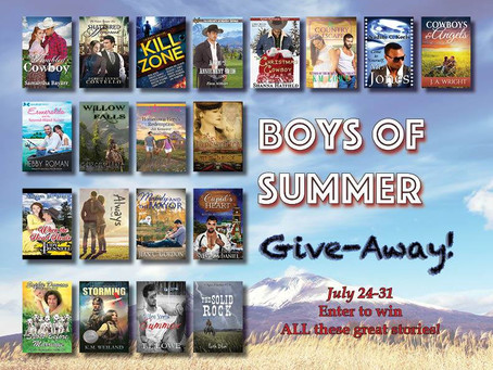 You can #WIN The #BoysofSummer TWENTY #Books #Giveaway #LadiesinDefiance