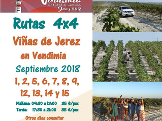 Route 4x4 vineyards of Jerez