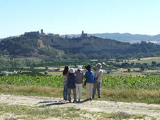La Sierra de Cádiz alberga la Ruta de los Pueblos Blancos.