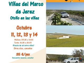 Rutas 4x4 viñas de Jerez - Sherry Week 2018.
