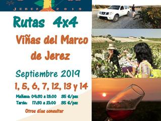 Experiencia turística por las viñas del Jerez en 4x4