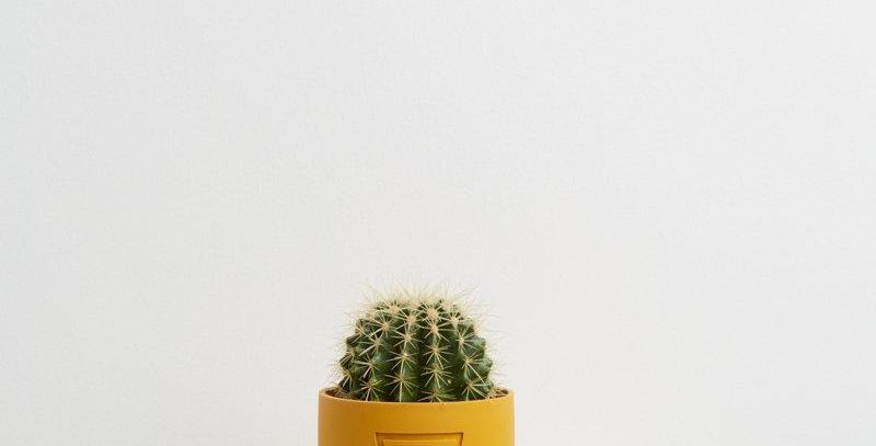 Etch Pot - Golden