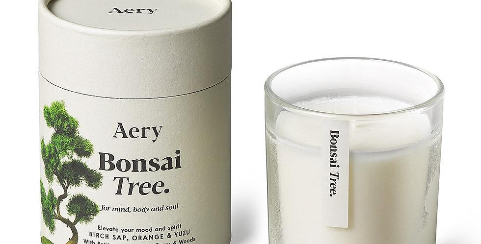 Bonsai Tree Candle