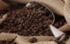 Coffee+Bean+BG+-+Original.png