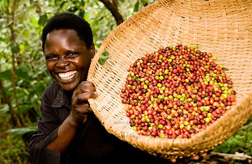 Fair-trade-coffee-Uganda-28.jpeg