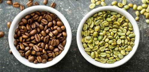 green_coffee_green_coffee_beans_raw_coff