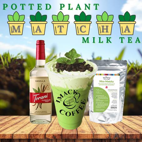Potted Plant Matcha Milk Tea
