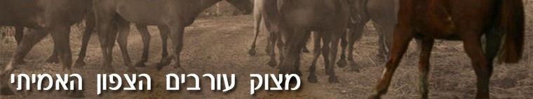 דף הבית של מצוק עורבים, יישוב קהילתי בצפון רמת הגולן, עם צימרים