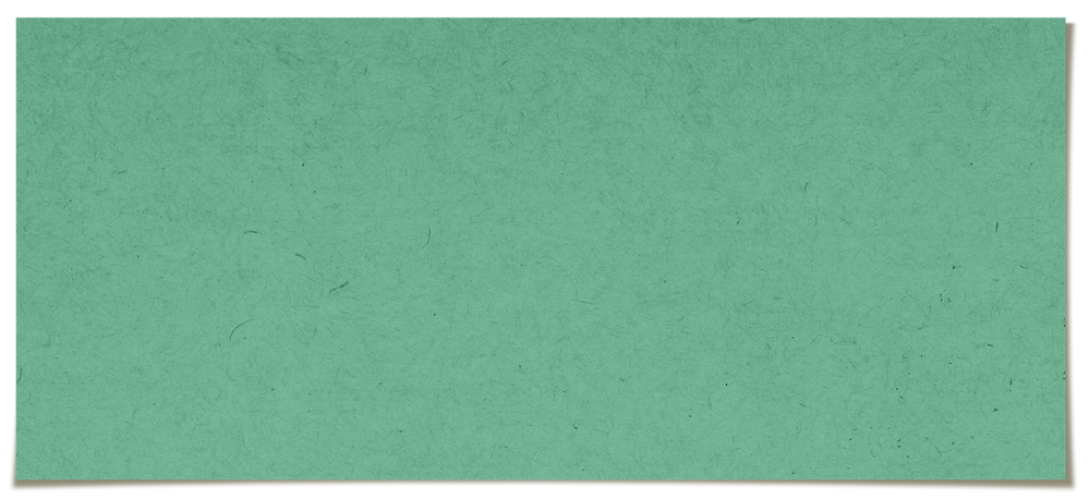 plain-green-paper-textured_edited.png