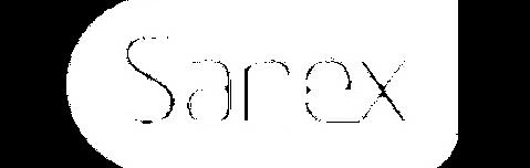 sanex logo.png