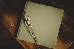 ALBUMS 72 | FOTOGRAFIE WENDY BROUWERS -5