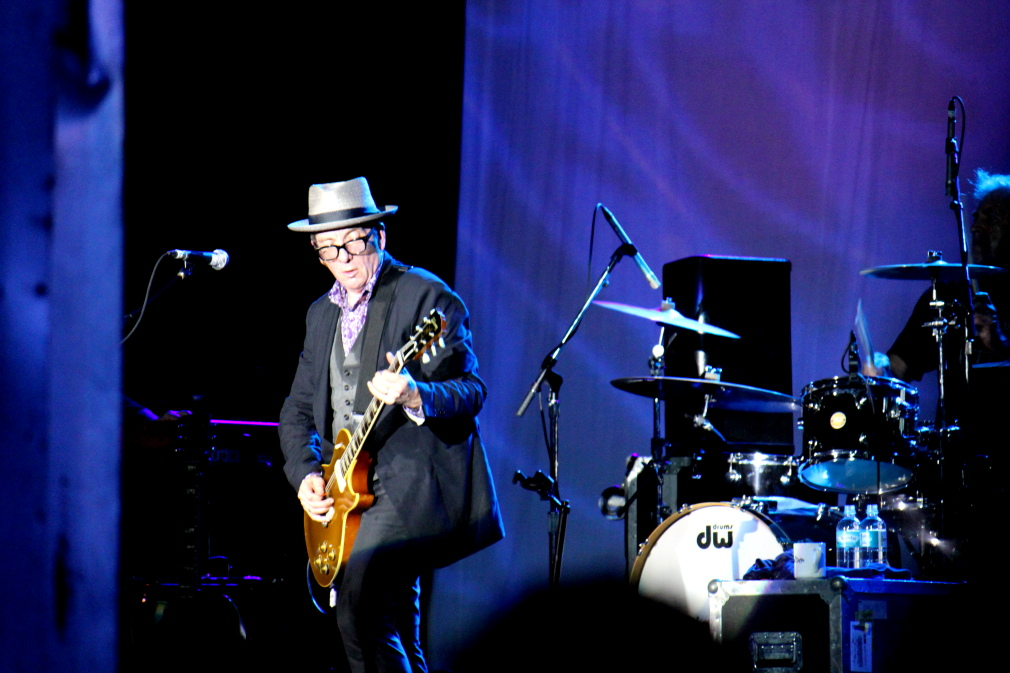 IMG_3149 Elvis Costello 2.JPG