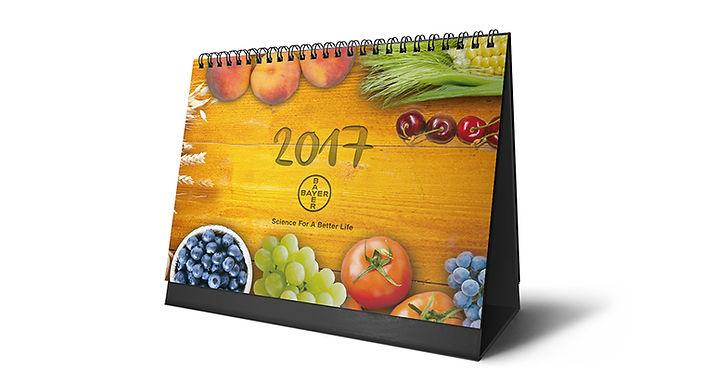 web-980x531-calendario.jpg