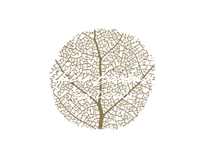 logo_barbastro_final_sandamian-01.png