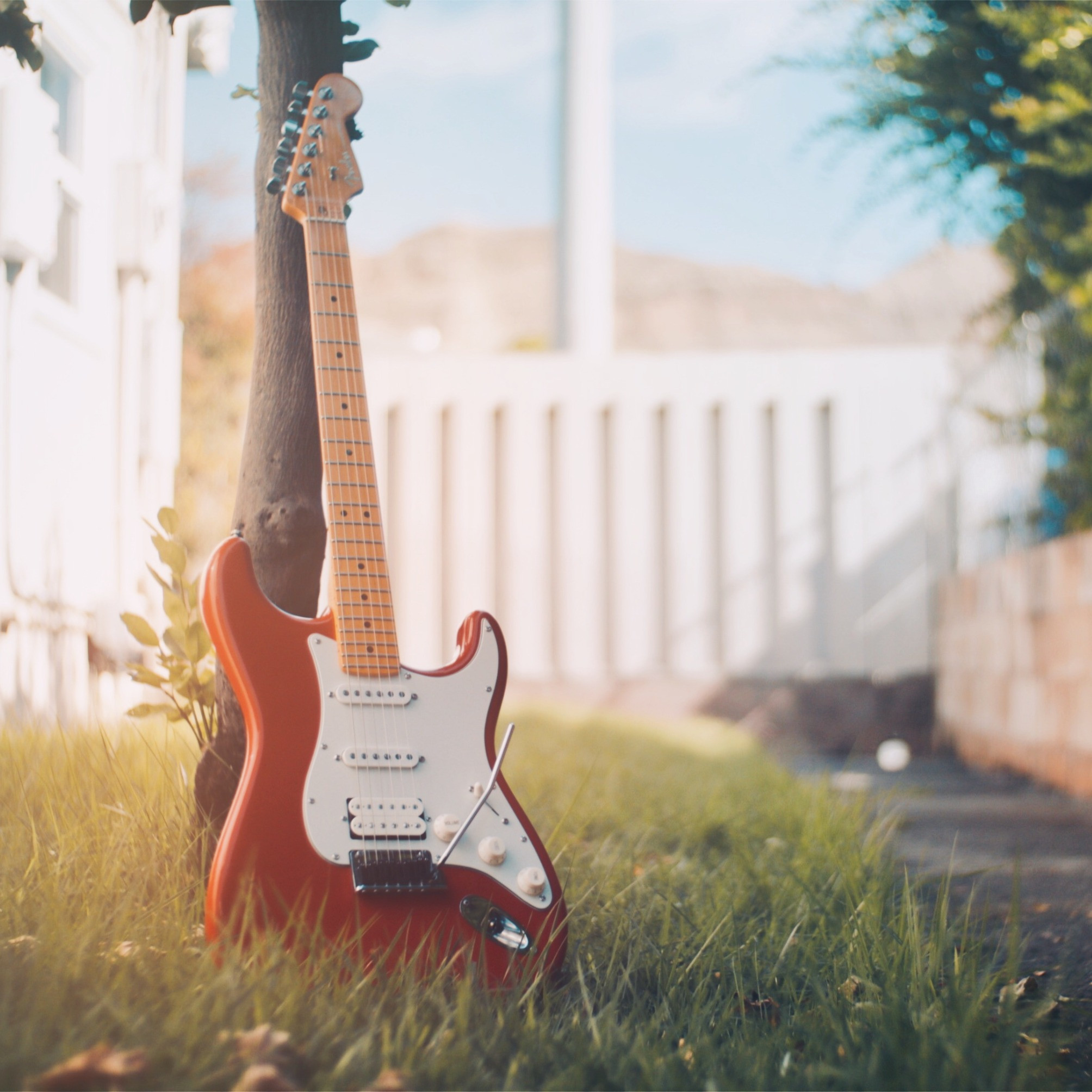 Guitar Lessons (1hr)