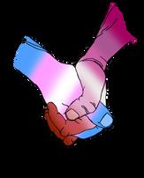 Trans/Lesbian Solidarity