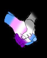 Trans/ Asexual Solidarity