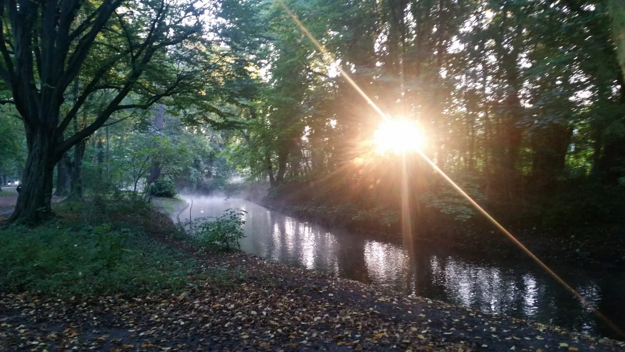 Magischer Morgen