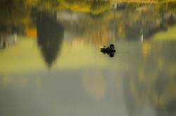 Lac Saint Point 7