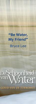 Boekenlegger Lee