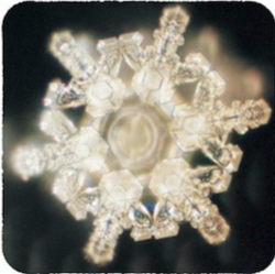 Water Kristallen op School_bewerkt