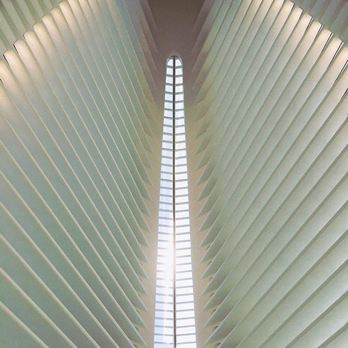 Calatrava Web.jpg