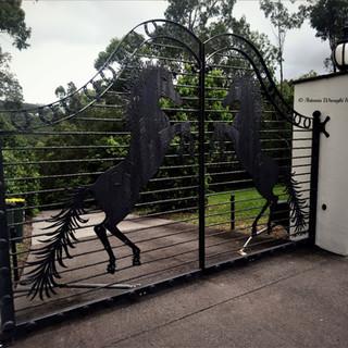 Wrought Iron Gates (17)_edited.jpg