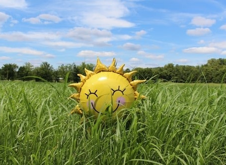 Is it now time to make hay while the sun shines?